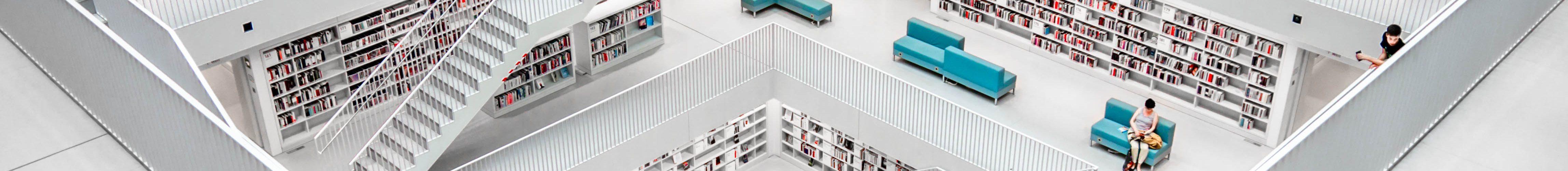 Zu sehen ist eine Bibliothek.